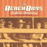 The Beach Boys Long Promised Road (Live)