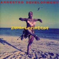 Arrested Development Zingalamaduni