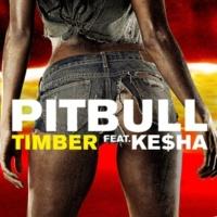 Pitbull ティンバー feat. KE$HA (Riddler Club Mix)