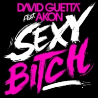 David Guetta Sexy Bitch (feat. Akon) [Afrojack Remix]