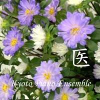 Kyoto Piano Ensemble 「悲しくてつらくても(韓国ドラマ『馬医』より)