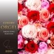 ラグジュアリー オルゴール ラグジュアリー オルゴール 桜ソング セレクション Vol.2