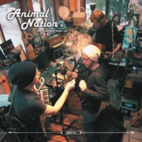 Animal Nation The Basement Tapes Vol.1