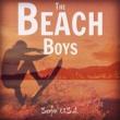 The Beach Boys Surfin' U.S.A.