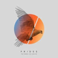 Prides The Seeds You Sow EP