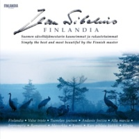 The Helsinki Strings Andante Festivo