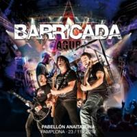Barricada Písale (Directo Anaitasuna 2013)
