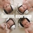 flumpool experience