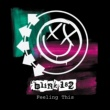 blink-182 Feeling This [International Version]