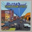 Grateful Dead Shakedown Street