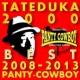タテヅカ2000 タテヅカ2000 BEST 2008-2013は歌舞伎町パンティカウボーイと嫁のために