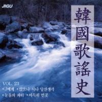 キム・ヨンジャ 水銀灯(韓国歌謡史23集)