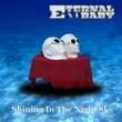 Eternal Baby Shining In The Night Sky