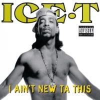 Ice T I Ain't New Ta This (Radio Version)