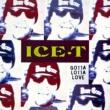 Ice T Gotta Lotta Love