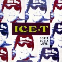 Ice T Gotta Lotta Love (Tubular Bells Edit)