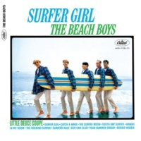 The Beach Boys Catch a Wave (Mono)