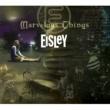 Eisley Marvelous Things