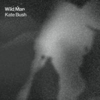 Kate Bush Wild Man (Radio Edit)