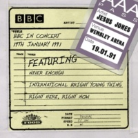 Jesus Jones Bring It On Down (BBC In Concert)