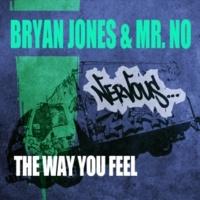 Bryan Jones & Mr. No The Way You Feel (Original Mix)
