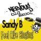 Sandy B Feel Like Singin'