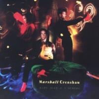 Marshall Crenshaw Wild Abandon