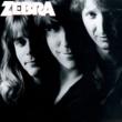 Zebra Zebra