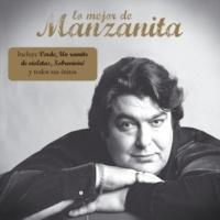 Armando Manzanero Te Extraño (feat. Manzanita)