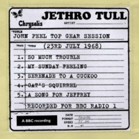 Jethro Tull A Song For Jeffrey (John Peel Top Gear Session)