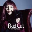 矢沢洋子 Bad Cat
