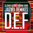 JaQwa DJ BAKU HYBRID DHARMA BAND - D.E.F REMIXES