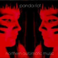 panda riot serious radical girls