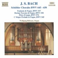 ヴォルフガンク・リュプザム(オルガン) J.S. バッハ: 目覚めよ、と呼ぶ声あり BWV 645