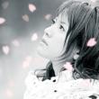 藤田麻衣子 横顔~わたしの知らない桜~/今でもあなたが