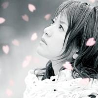 藤田麻衣子 横顔~わたしの知らない桜~