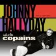 ジョニー・アリディ Salut Les Copains 1966 - 1969