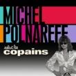 ミッシェル・ポルナレフ Salut Les Copains