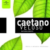 Caetano Veloso Luz Do Sol