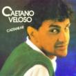 Caetano Veloso Caetanear