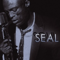 Seal I've Been Loving You Too Long