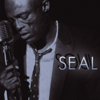 Seal It's A Man's Man's Man's World