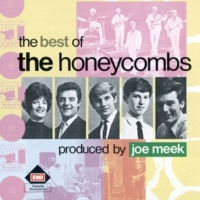 The Honeycombs I Want To Be Free