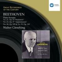 Walter Gieseking Piano Sonata No. 30 in E Major, Op. 109: II. Prestissimo