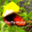 秋山タイジ Butterfly Mode