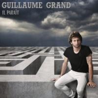 Guillaume Grand J'veux vous voir sueur