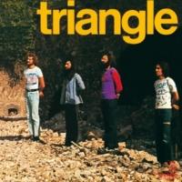 Triangle Viens Avec Nous