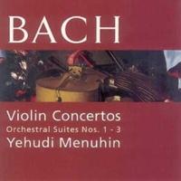 Yehudi Menuhin/Bath Festival Orchestra Violin Concerto in A Minor, BWV 1041 (1989 Remastered Version): II. Andante