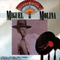 Miguel De Molina Quintilla Gitana
