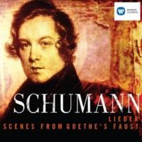 Thomas Hampson/Wolfgang Sawallisch 4 Gesänge, Op. 142: No. 2, Lehn' deine Wang' (Leidenschaftlich)